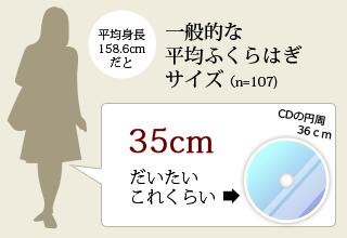 一般的なふくらはぎサイズ