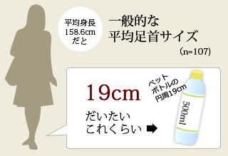 一般的な足首サイズ