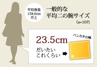 一般的な二の腕サイズ