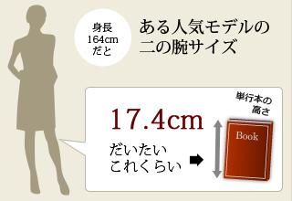 ある人気モデルの二の腕サイズ