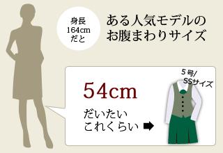 ある人気モデルのお腹まわりサイズ